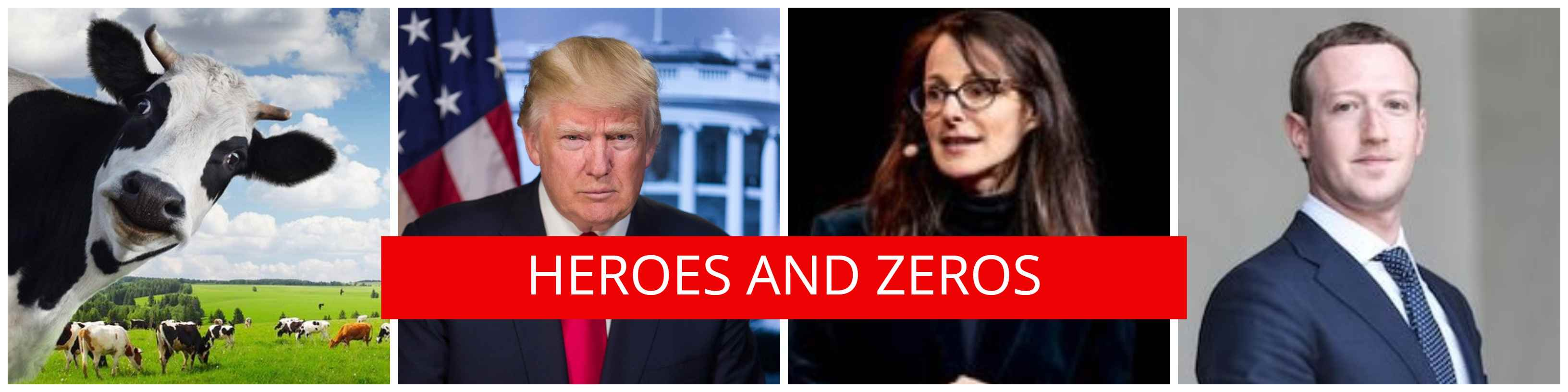 CLBR's Heroes and Zeros for 2019 and the Decade